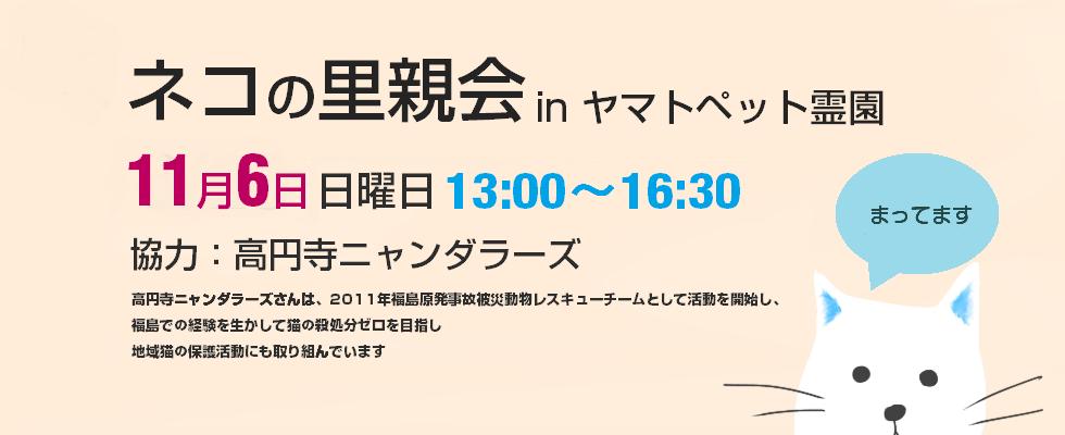 2016年11月6日高円寺ニャンダラーズねこ里親会