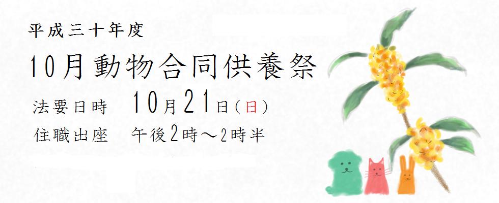 平成三十年度 10月動物合同供養祭<br /> 法要日時 10月21(日)