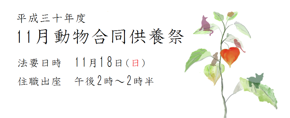 平成三十年度 11月動物合同供養祭<br /> 法要日時 11月18(日)