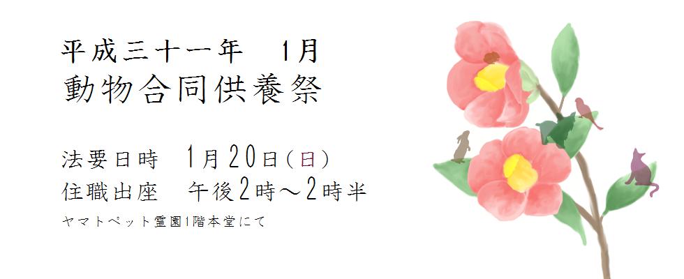 平成三十一年度 1月動物合同供養祭<br /> 法要日時 1月20(日)