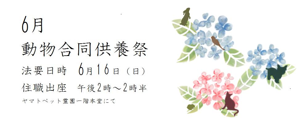 令和元年度 6月動物合同供養祭<br /> 法要日時 6月16(日)