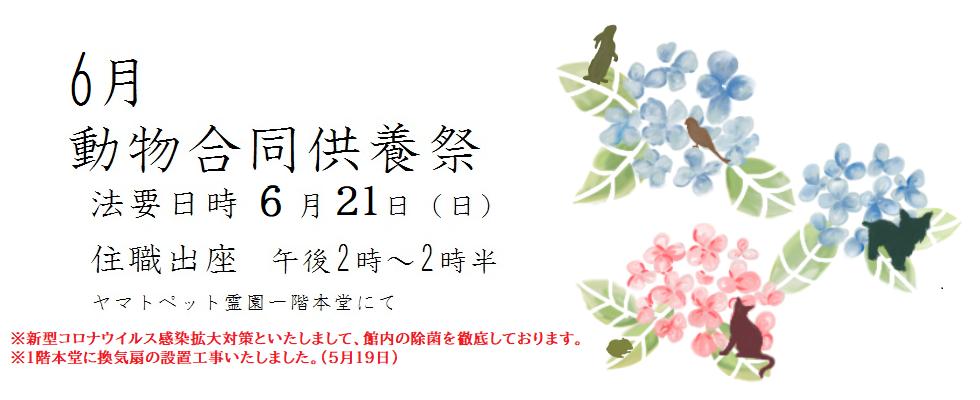 令和2年度 6月動物合同供養祭<br /> 法要日時 6月21日(日)