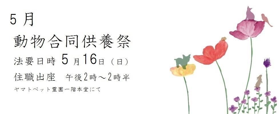 令和3年度 5月動物合同供養祭<br /> 法要日時 5月16日(日)